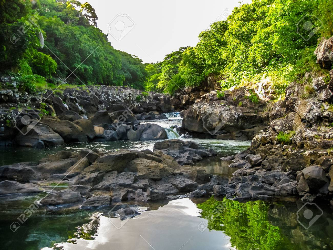 Landscape of the Black River Gorges National Park is the largest protected forest of Mauritius, Indian Ocean. Stock Photo - 47469826