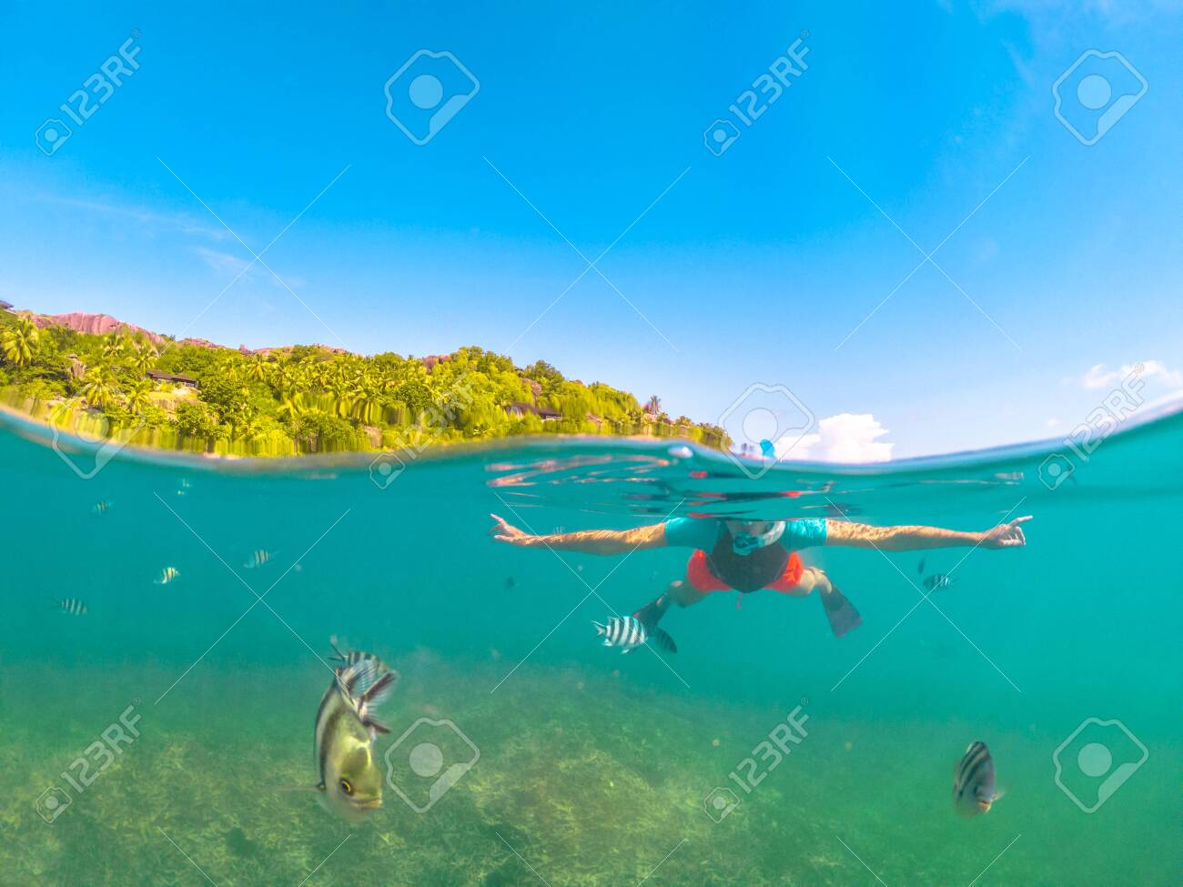 Split view of female apnea under and above the sea. Snorkeling dress woman at Felicite, La Digue satellite island, Seychelles. Travel lifestyle watersport activity. Fish and sealife in foreground. - 123848681