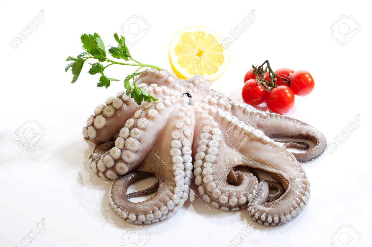 Octopus lemon and tomatoes isolated on a white background Stock Photo - 9649095