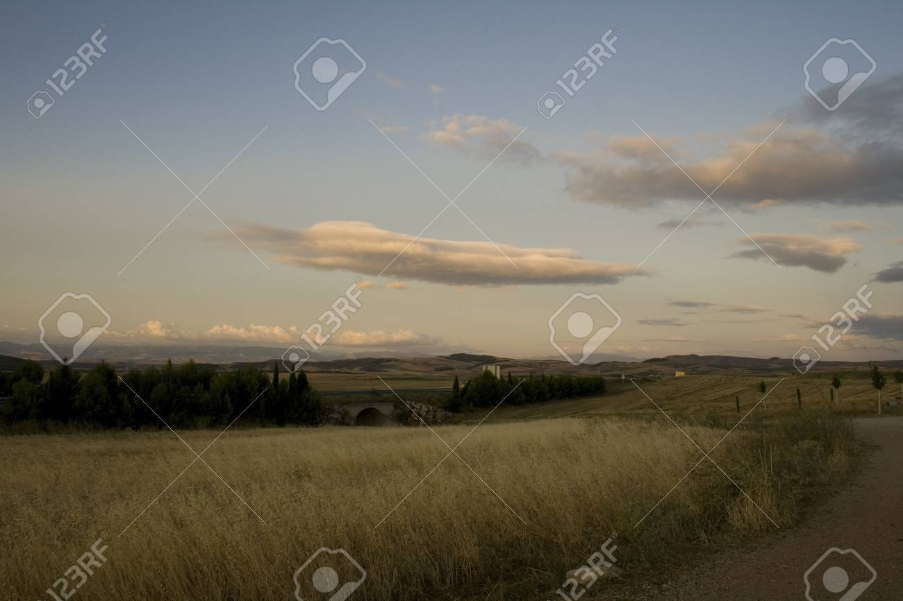 View of the Spanish countryside in the summer Stock Photo - 13841959
