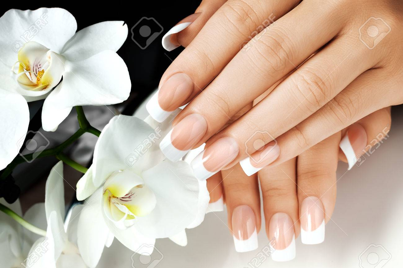Female hands with white nails on background of white flowers stock female hands with white nails on background of white flowers stock photo 77400013 mightylinksfo