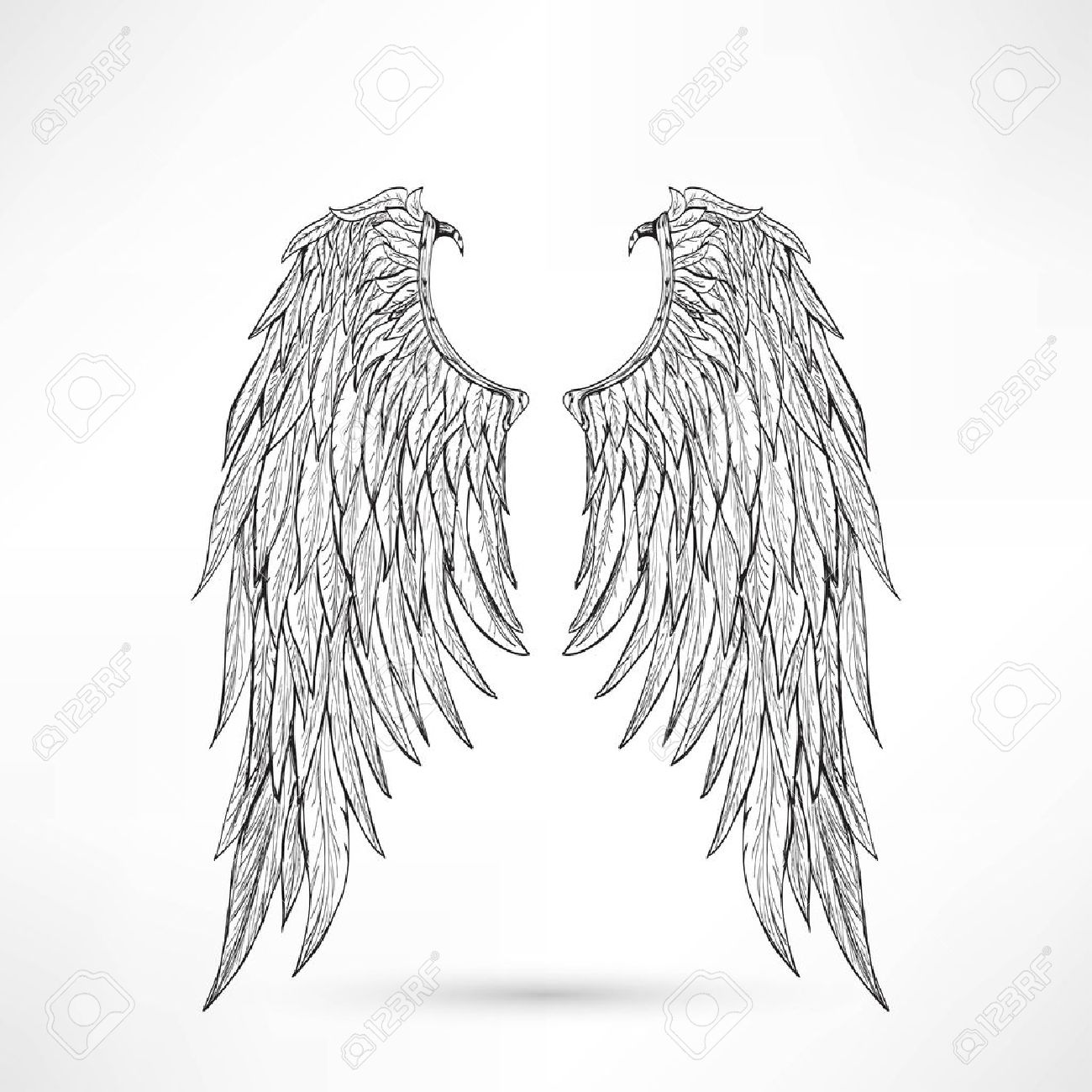 Angel of death stock photos pictures royalty free angel of illustration angel wings illustration buycottarizona