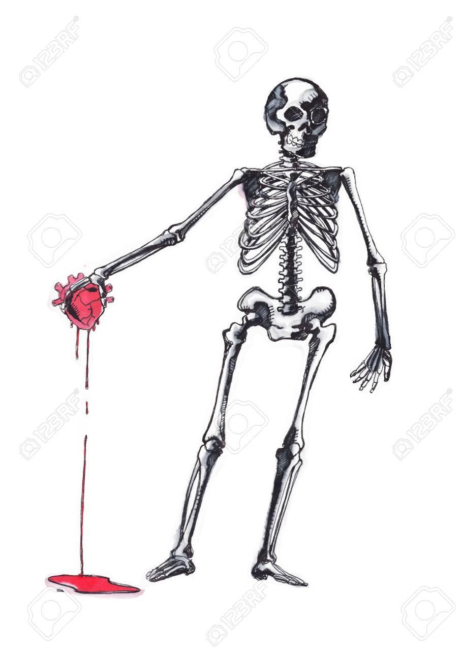 Illustration Vectorielle Dessinés à La Main Ou Dessin D Un Squelette Humain Avec Un Coeur Sur Sa Main