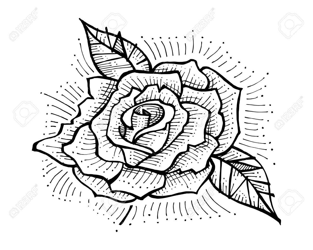 Illustration Dessinee A La Main Ou Dessin D Une Fleur De Rose Clip