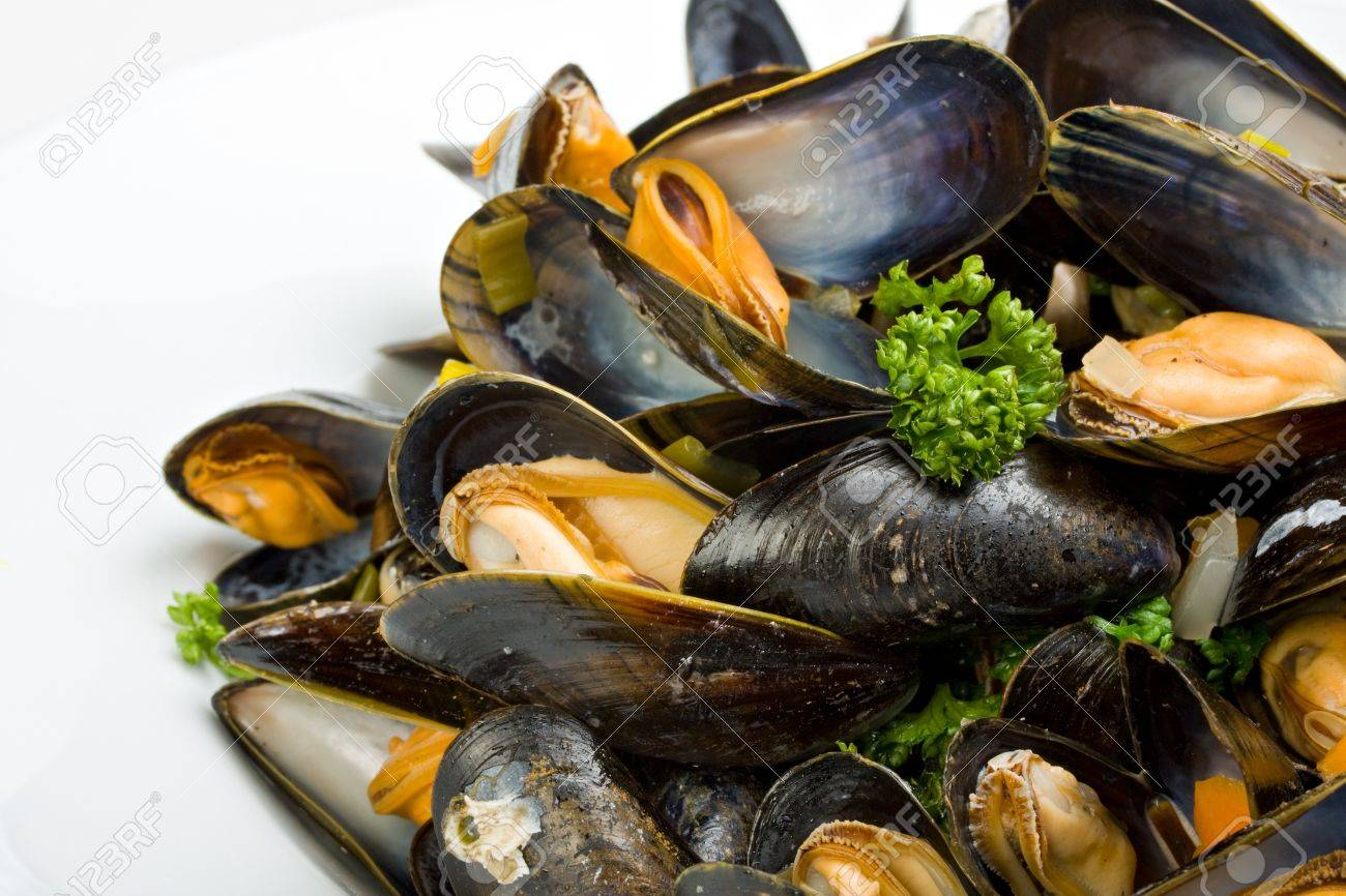 cooked open blue mussels on white background Stock Photo - 4536337
