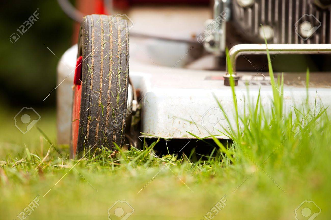 detail of a lawn-mower outdoor - 10327788