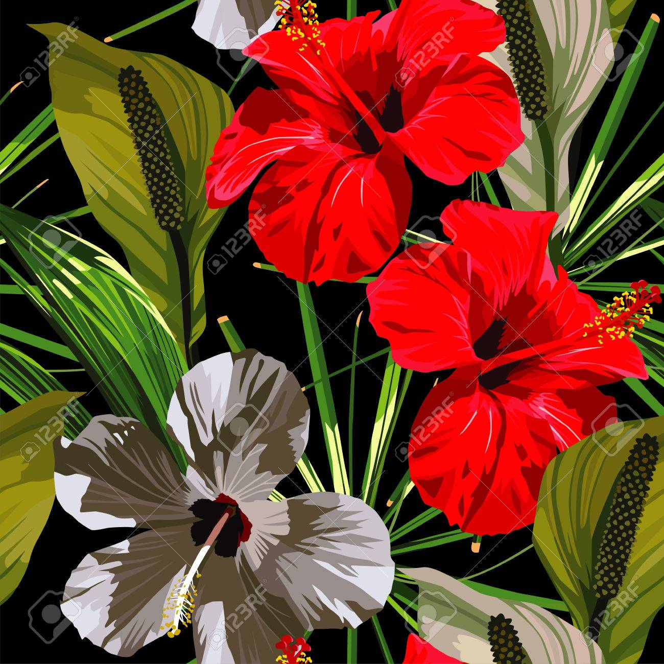 Red and white hibiscus flowers with green leaves on a black red and white hibiscus flowers with green leaves on a black background zdjcie seryjne izmirmasajfo