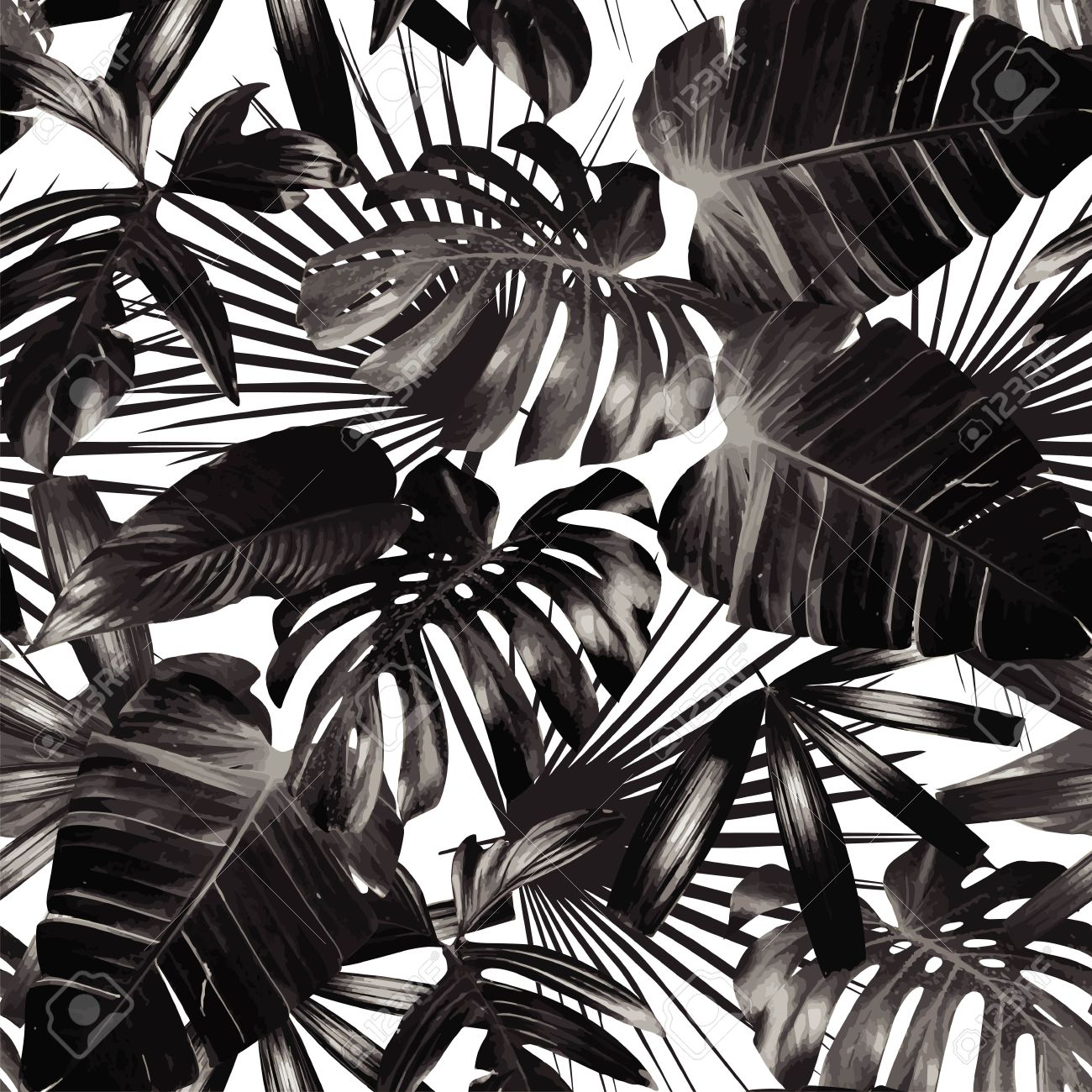 Print Black And White Background Style Exotic Floral Jungle
