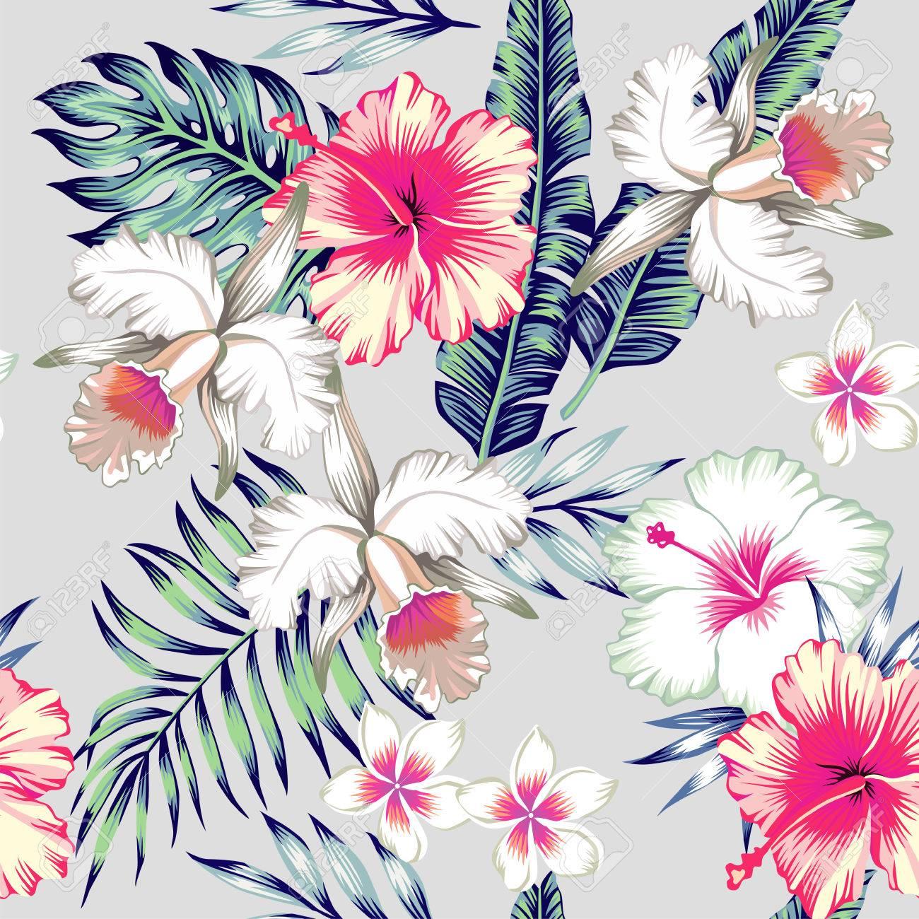foto de Tropic Fleurs Exotiques D'hibiscus, Orchidées, Frangipanier. En ...