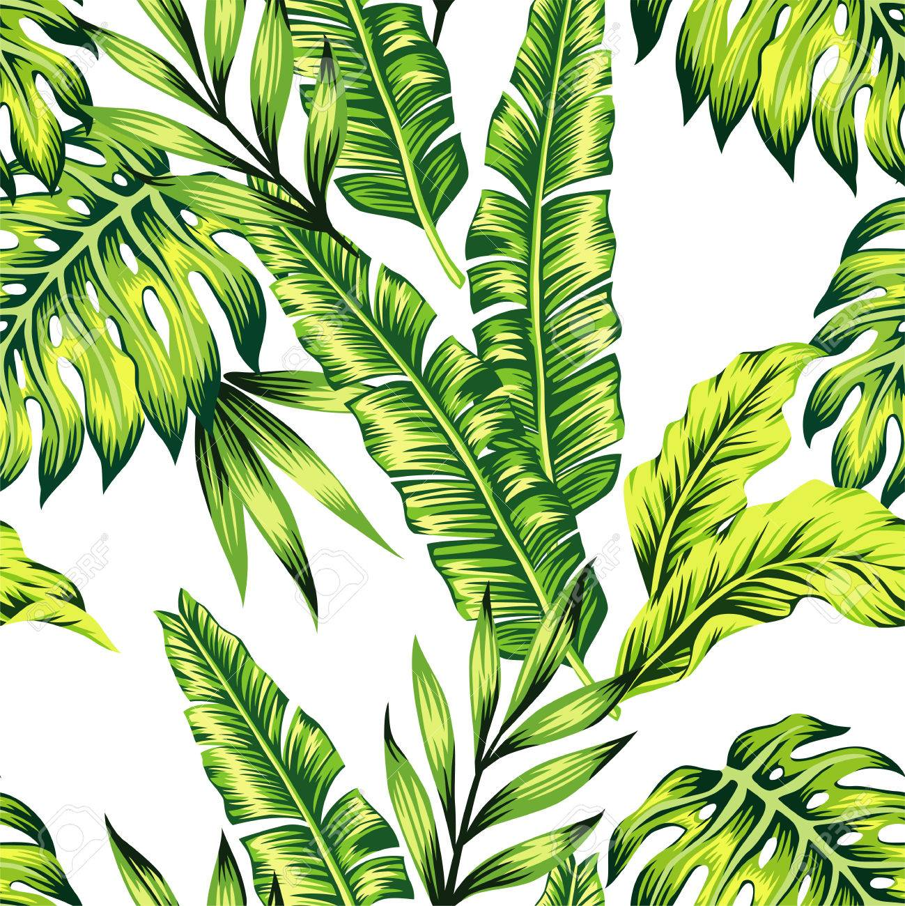 Fashion Painting Jungle Wallpaper Of Exotic Tropic Plants Of