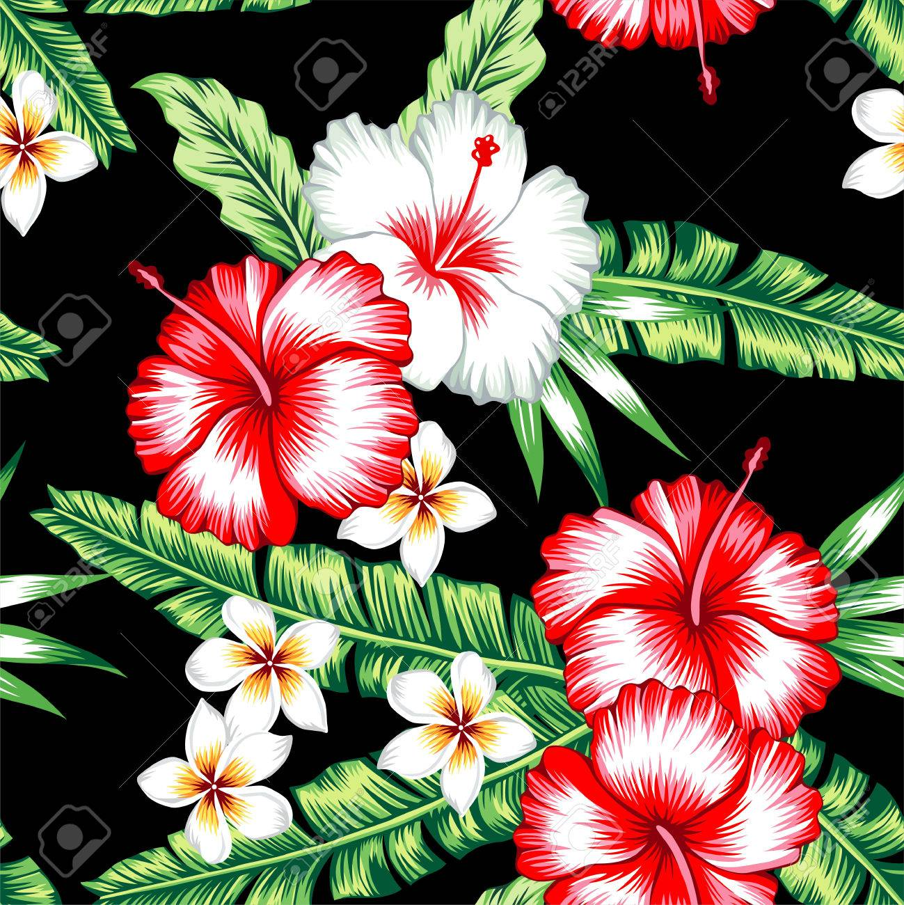 Tropic Summer Floral Hibiscus And Plumeria Seamless Pattern With ...