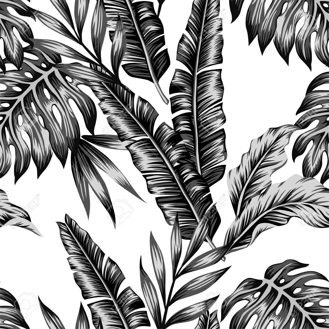 Tropic Plants Floral Seamless Jungle Pattern Print Background