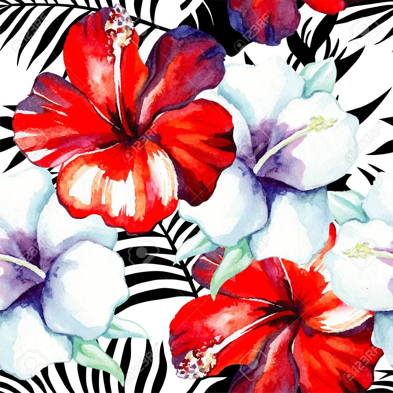 Fleurs Tropic Rouge Et Blanc Peinture à Lhibiscus Aquarelle Exotic