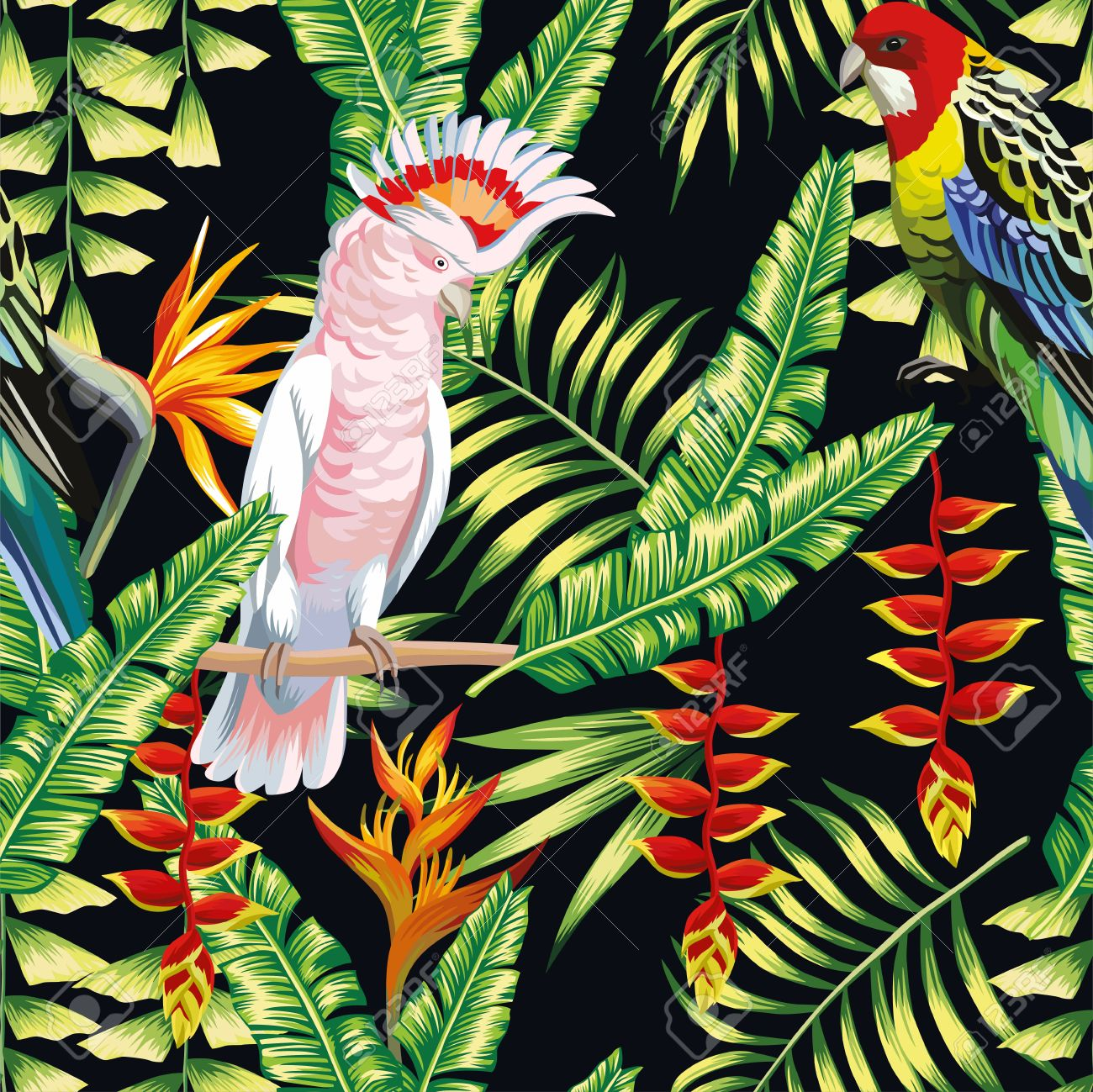 Tropic Bird Macaw And Multicolor Parrot On The Background Exotic Lobster  Claws Flower, Strelitzia And
