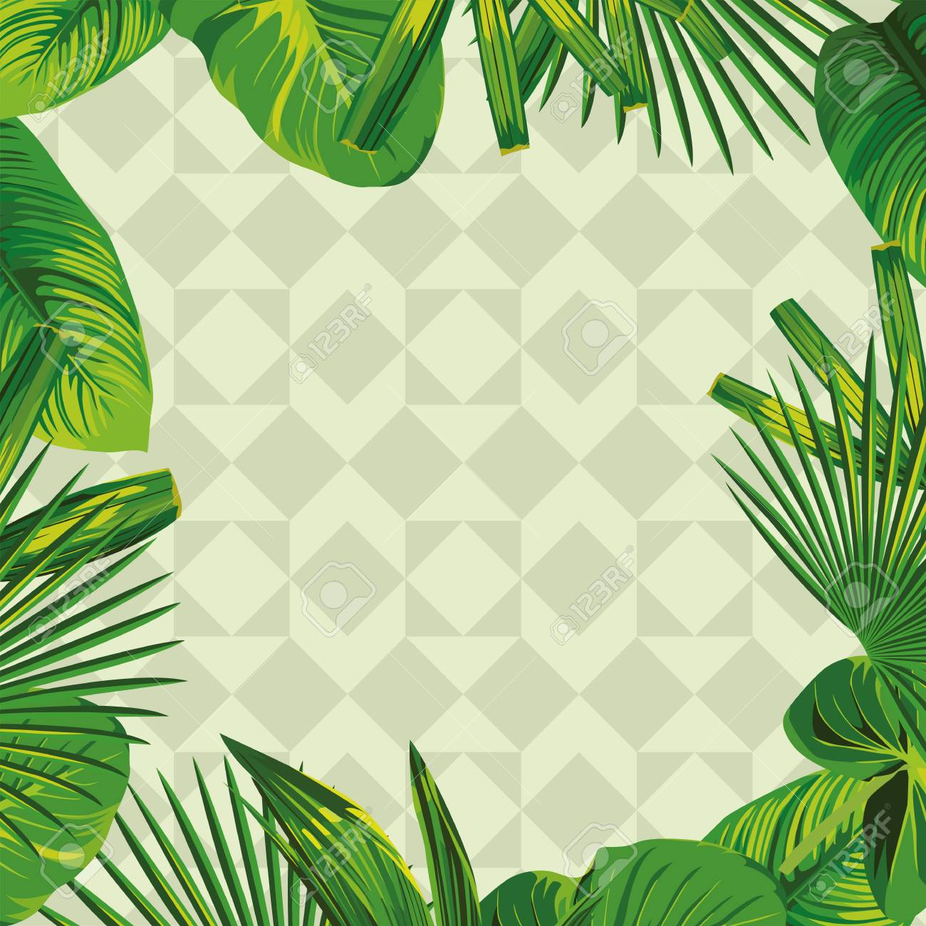 Frame Of Tropical Green Leaves In Olive Geometric Background Royalty Free Cliparts Vectors And Stock Illustration Image 69354536 Today's video is a tropical leaves green screen pack. frame of tropical green leaves in olive geometric background