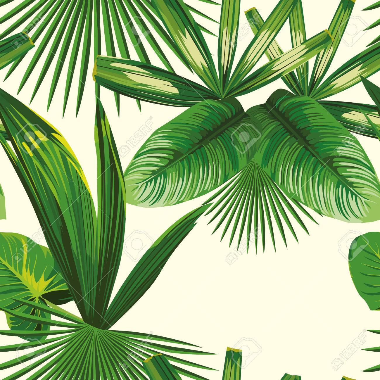 foto de Composition De Printemps à Partir De Plantes Tropicales, Feuilles ...