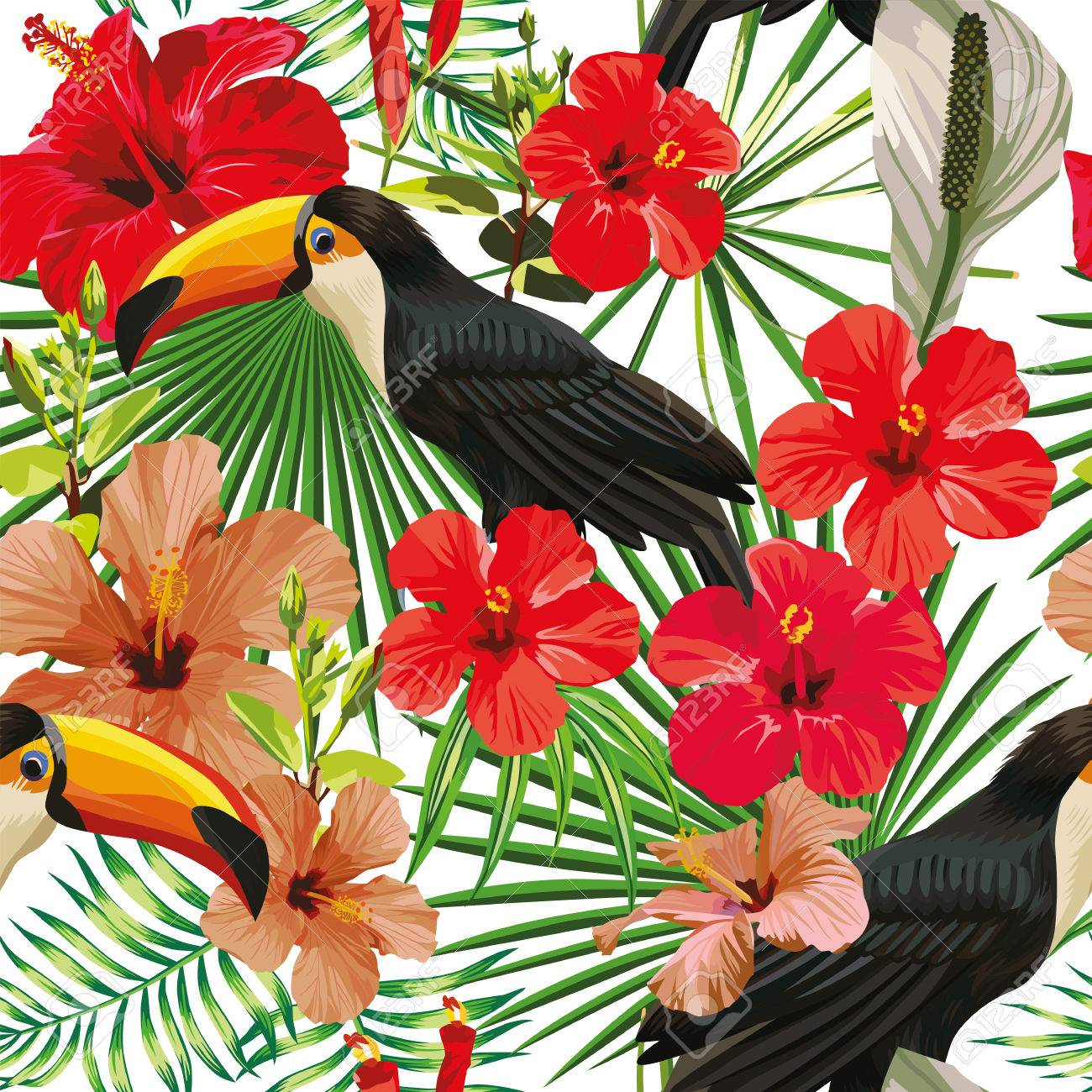 Exotic Composition From Tropical Bird Toucan Leaves And Hibiscus ...