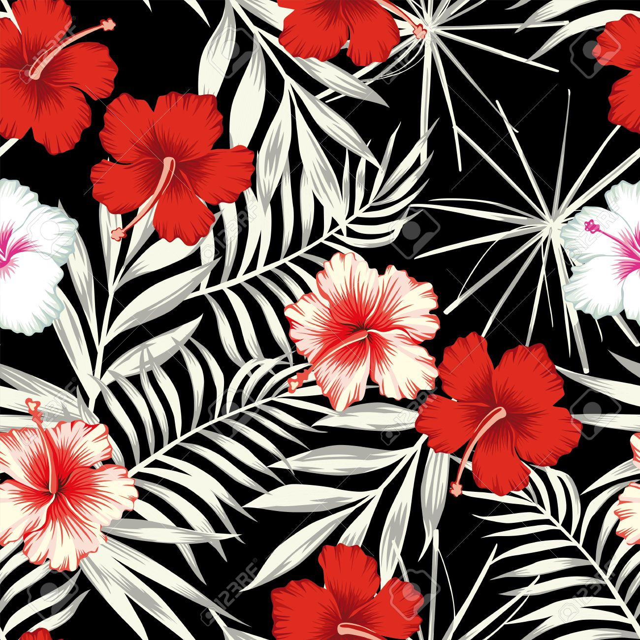 Red White Hibiscus Flowers On A Black And White Background Of