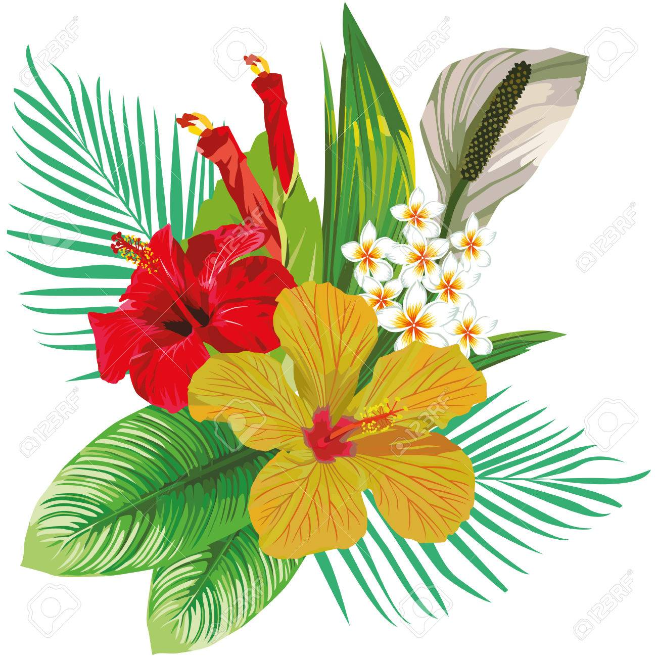 Floral Composition Of Hibiscus Flowers And Plumeria With Tropical Leaves Beach Wallpapers On White Background