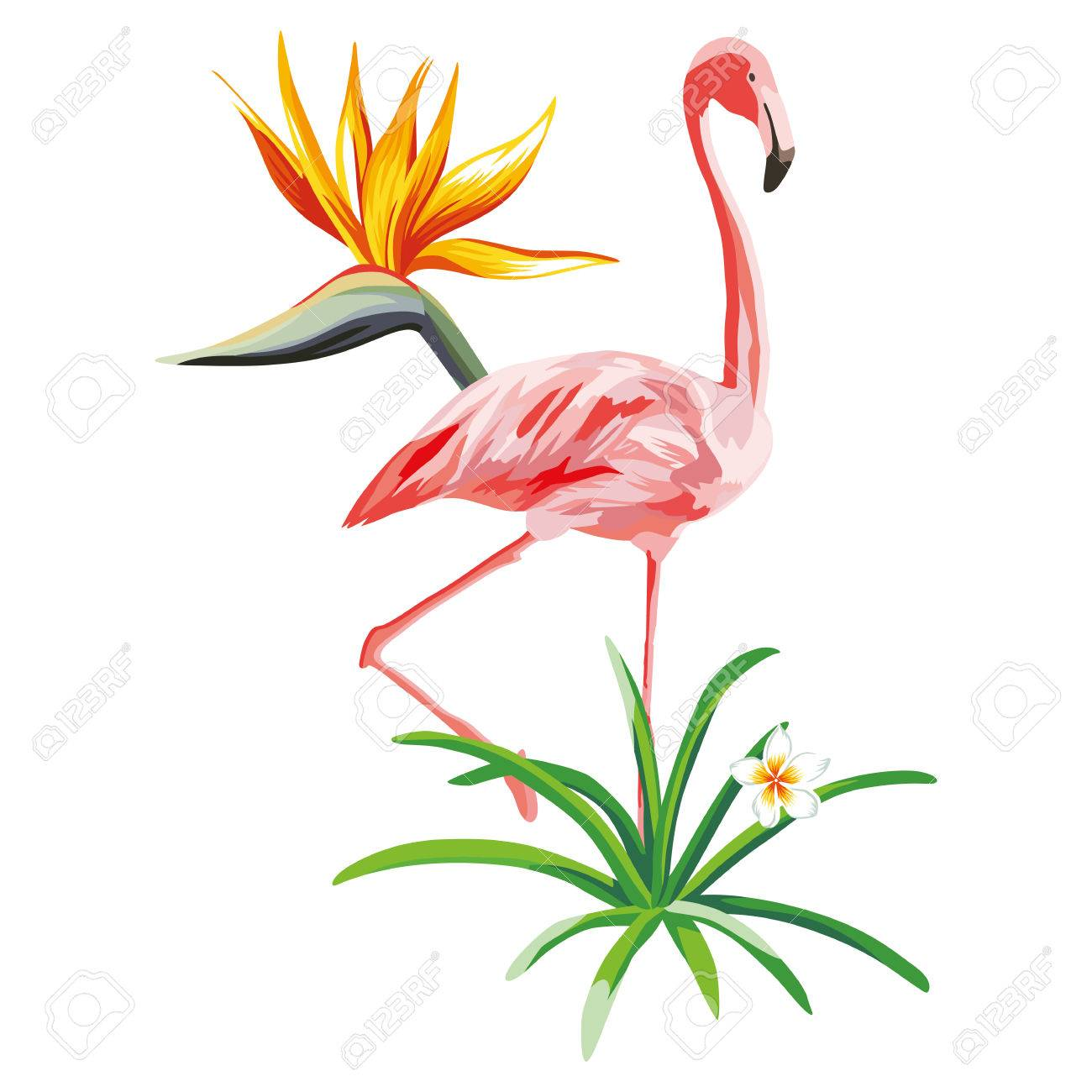 Standing pink flamingo with tropical plants and flowers beach standing pink flamingo with tropical plants and flowers beach wallpaper stock vector 85503349 mightylinksfo