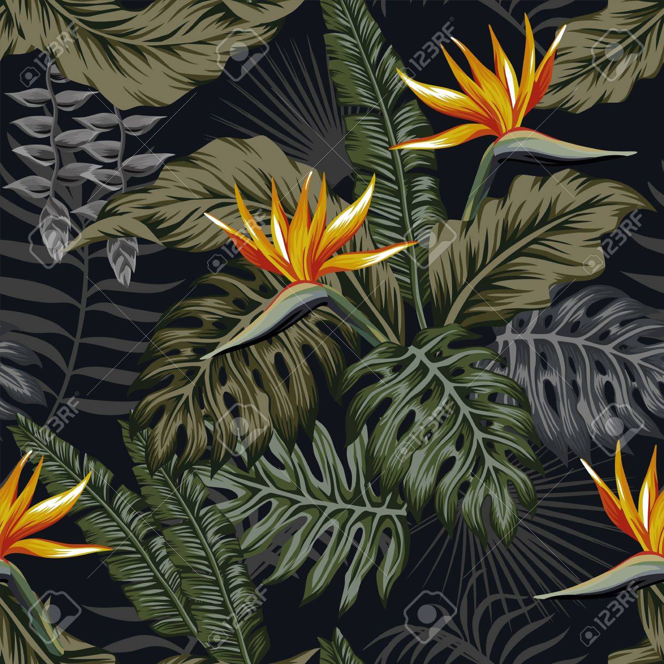 Night Jungle Tropical Seamless Pattern Plants And Flowers Dark Royalty Free Cliparts Vectors And Stock Illustration Image 86543920