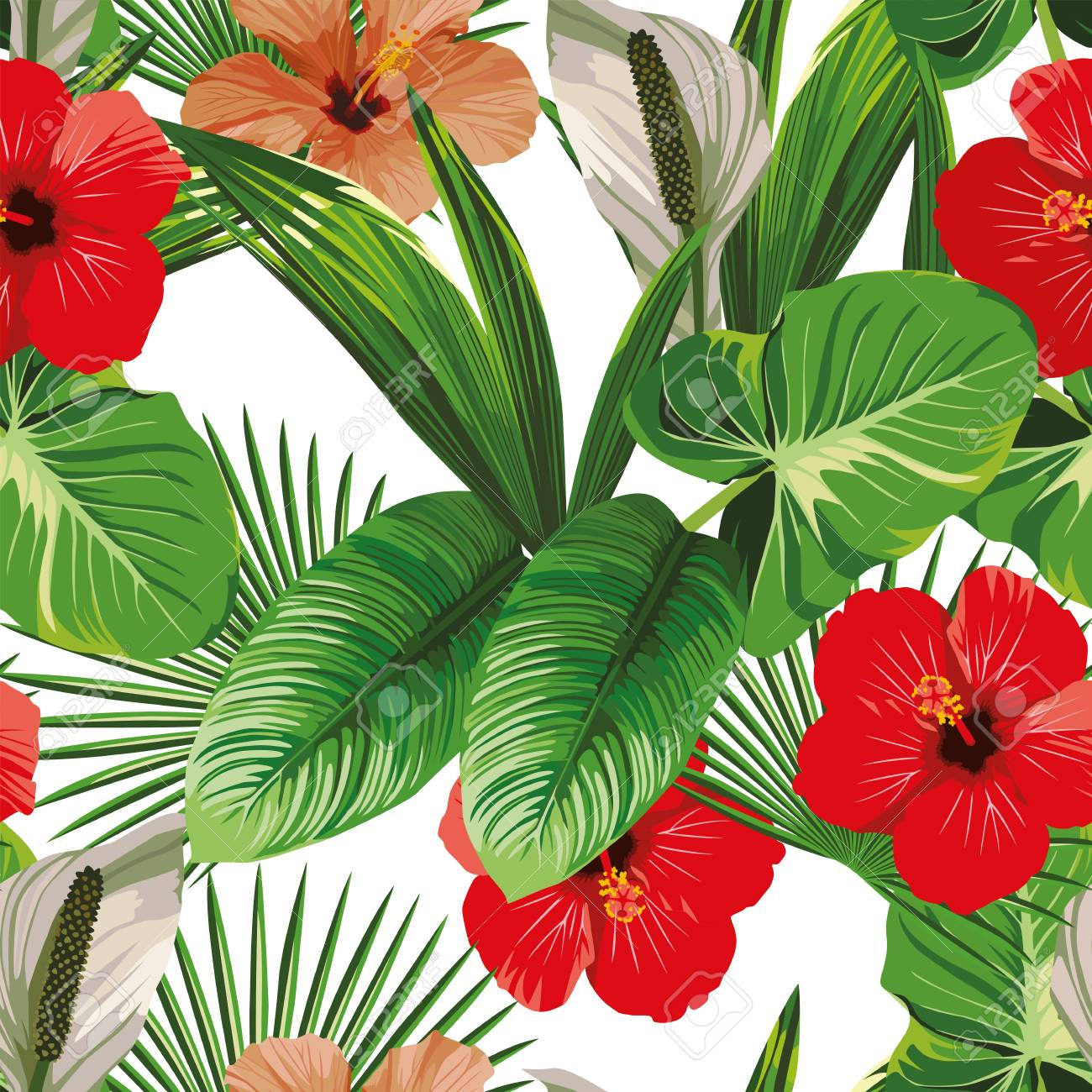 exotic hibiscus flowers and tropical leaves white background