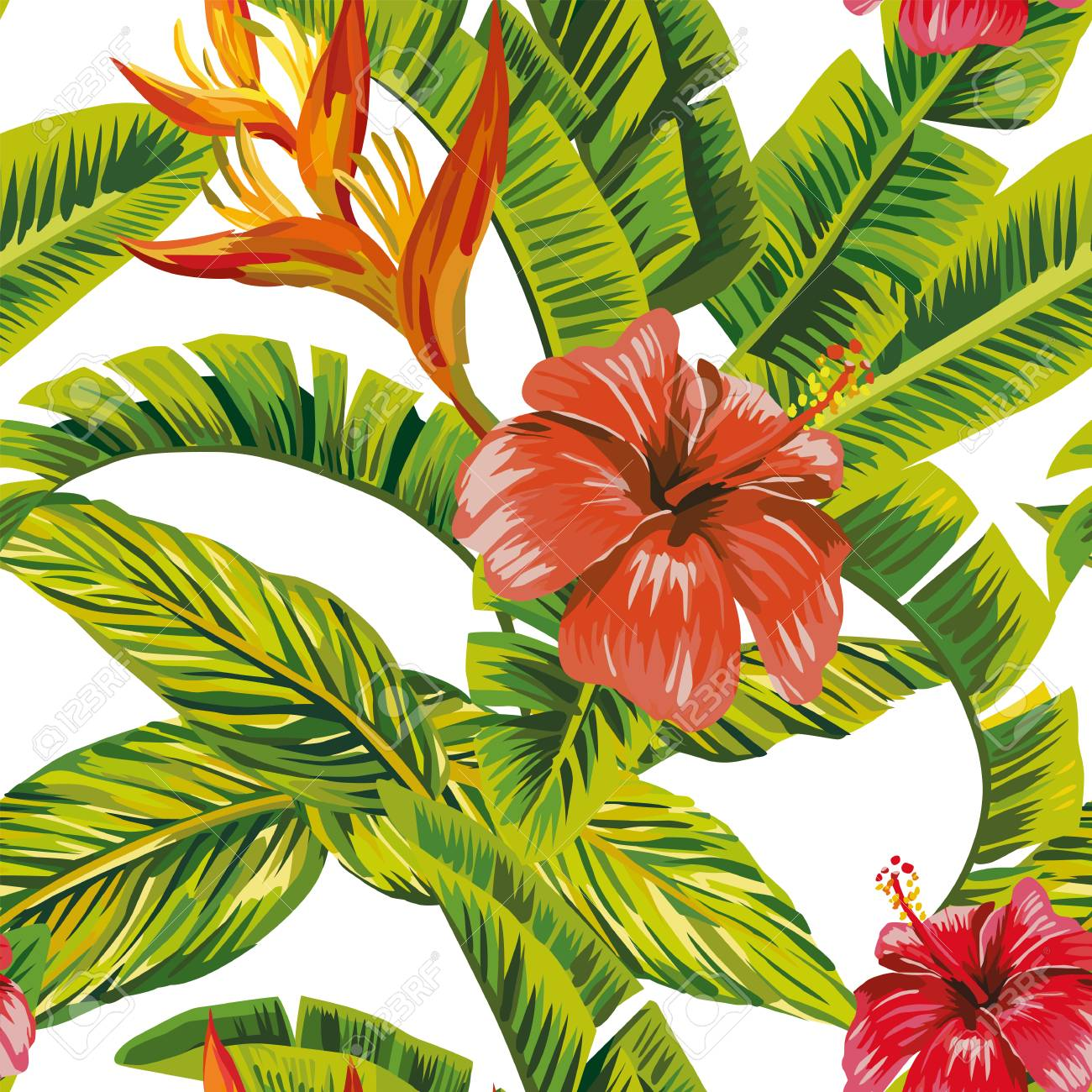 Seamless Vector Pattern Tropical Leaves And Exotic Flowers Hibiscus
