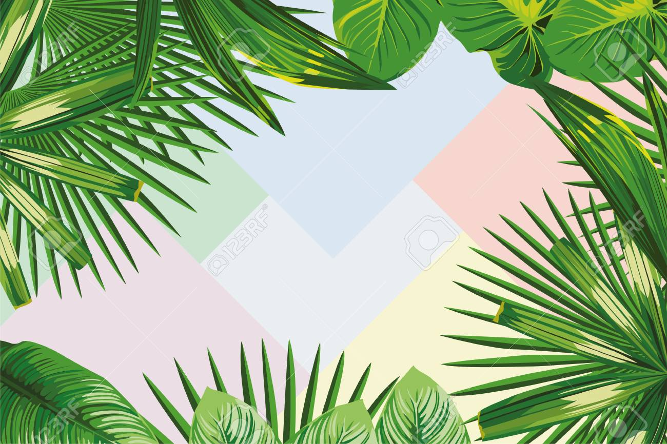 Exotic Spring Frame Of Tropical Leaves On The Geometrical Pastel Royalty Free Cliparts Vectors And Stock Illustration Image 94310615 How to credit on printed materials? exotic spring frame of tropical leaves on the geometrical pastel