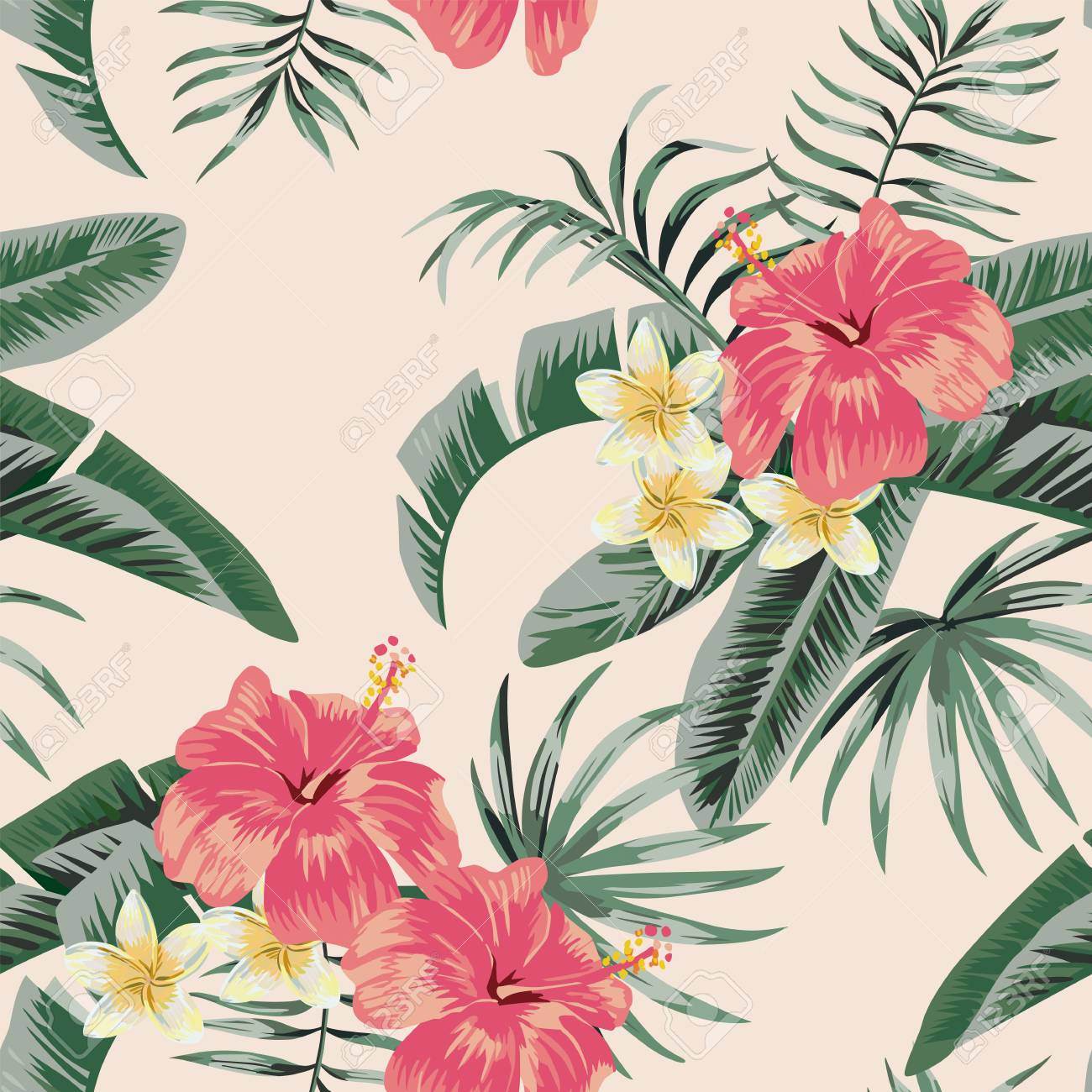 Flowers Vector Plumeria And Hibiscus Flower Leaves Tropical Beach