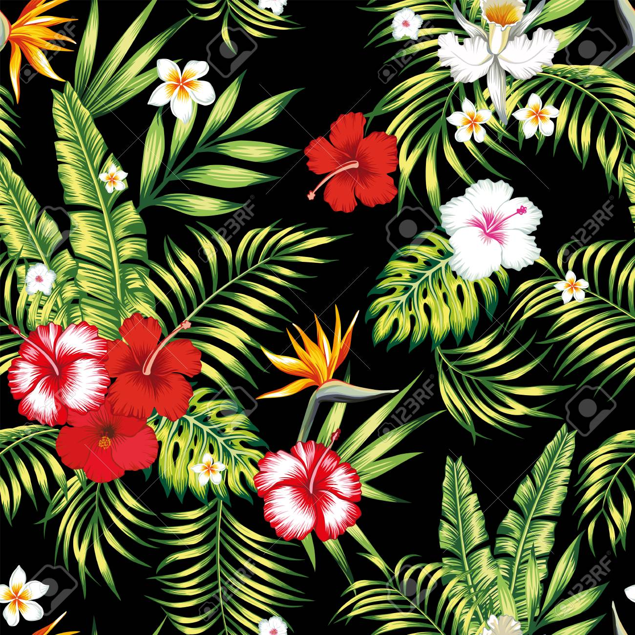Beauty seamless realistic vector botanical pattern from hibiscus, plumeria, orchid, bird of paradise flowers and palm, banana, monstera leaves on the black background - 122038796