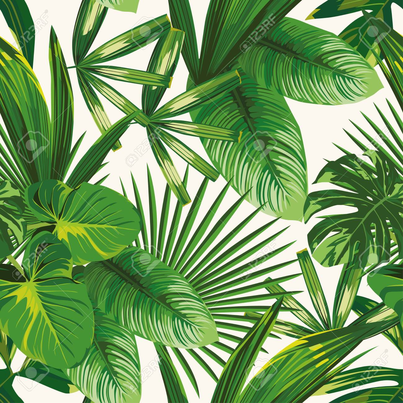 Exotic tropical natural green leaves vector composition on white background. Beach seamless pattern wallpaper - 142834510