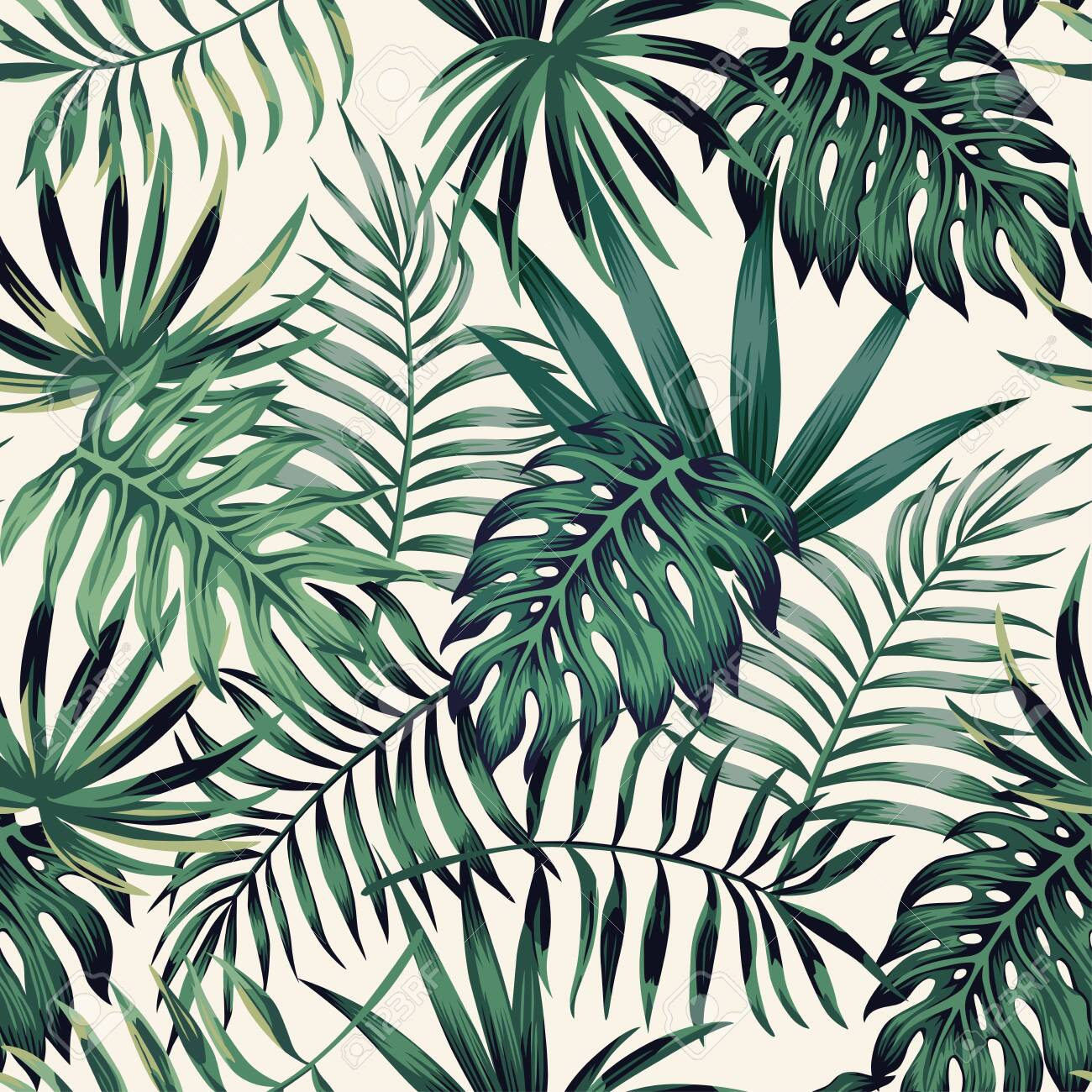 Exotic tropical palm, monstera, fern leaves seamless pattern on the white background. Jungle vector leaves wallpaper. - 147428187