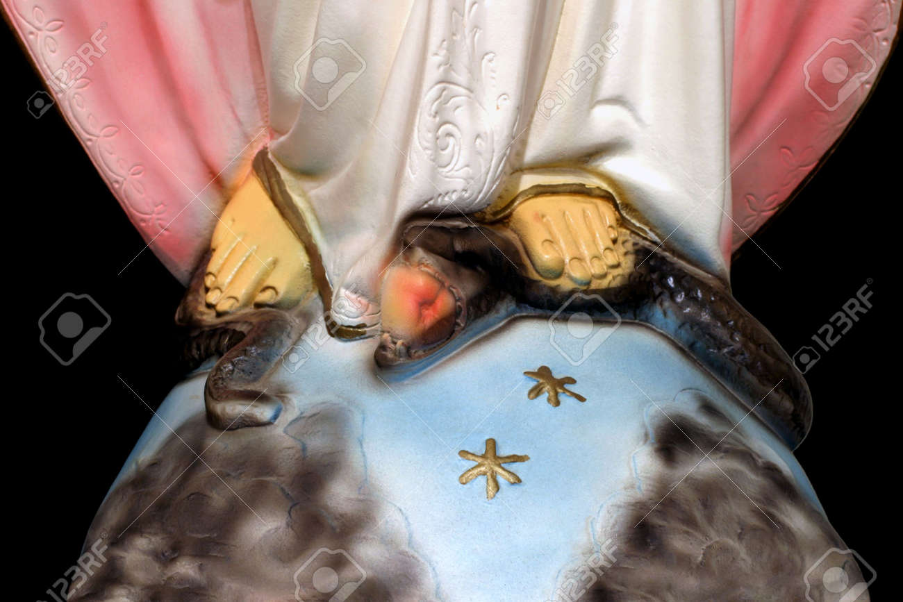 Controlling temptation close up on the foot of mary queen controlling temptation close up on the foot of mary queen of heaven and biocorpaavc
