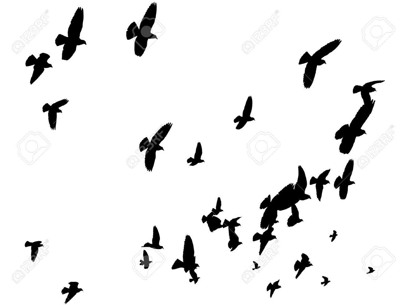 vector birds silhouettes flying away peace to the world royalty rh 123rf com bird vector free birds victoria au