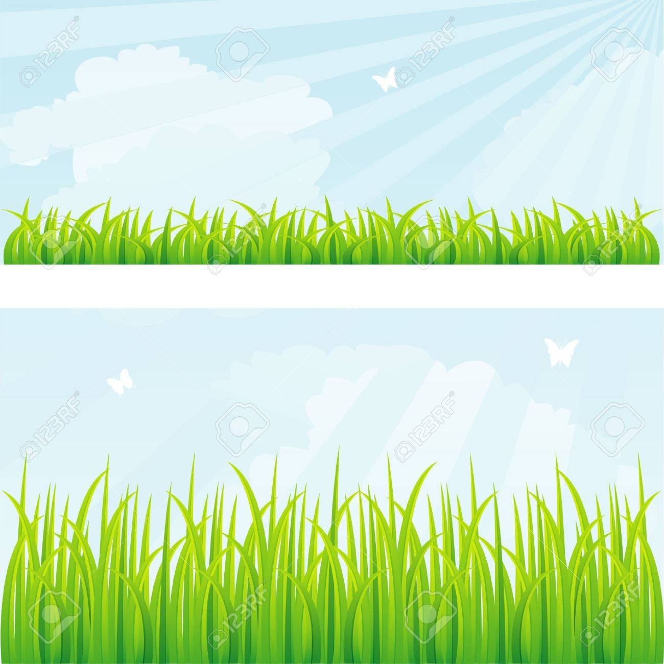 Vector illustration of Summer background with grass Stock Vector - 14863987