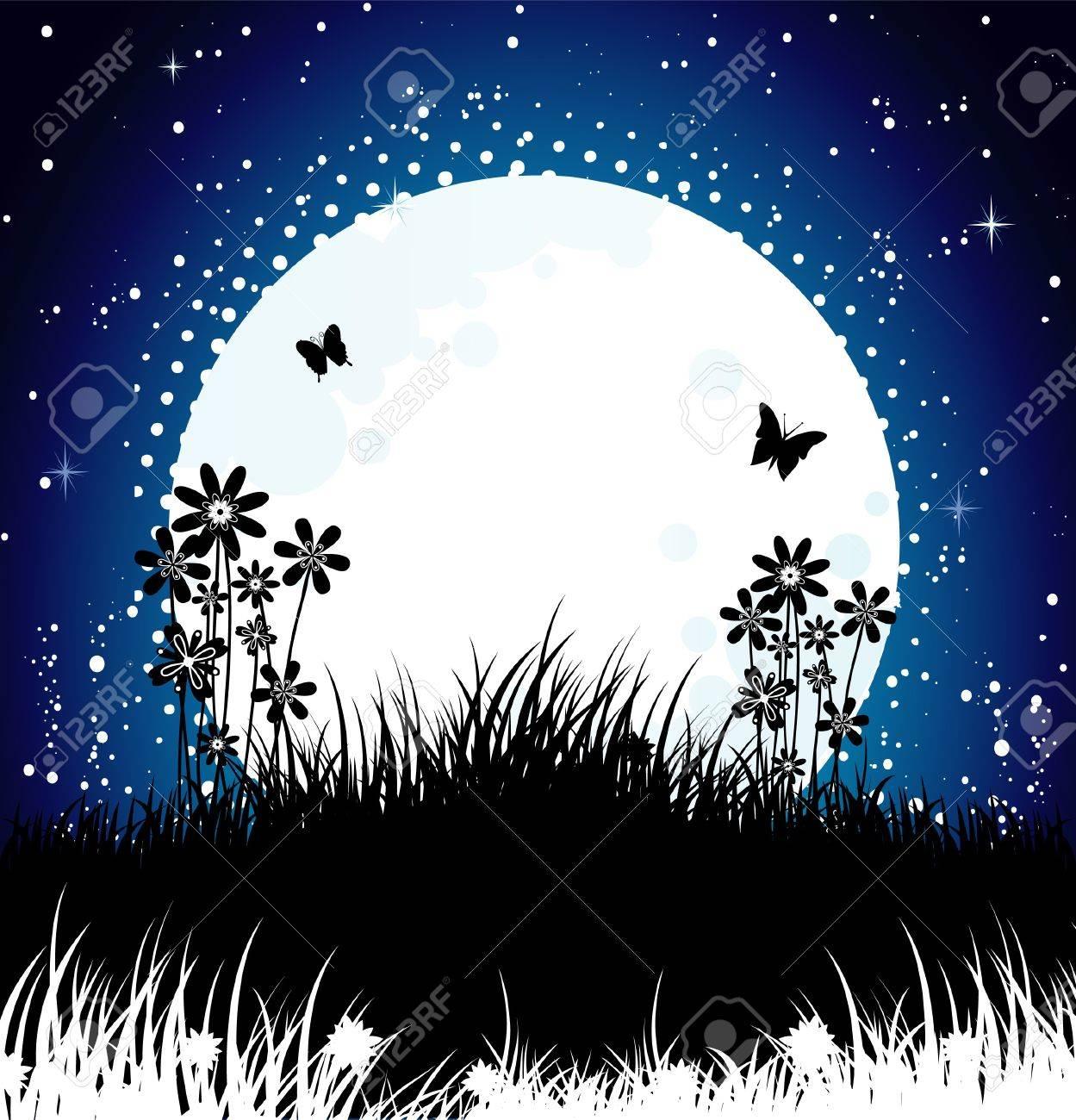 Moon night Stock Vector - 14865088