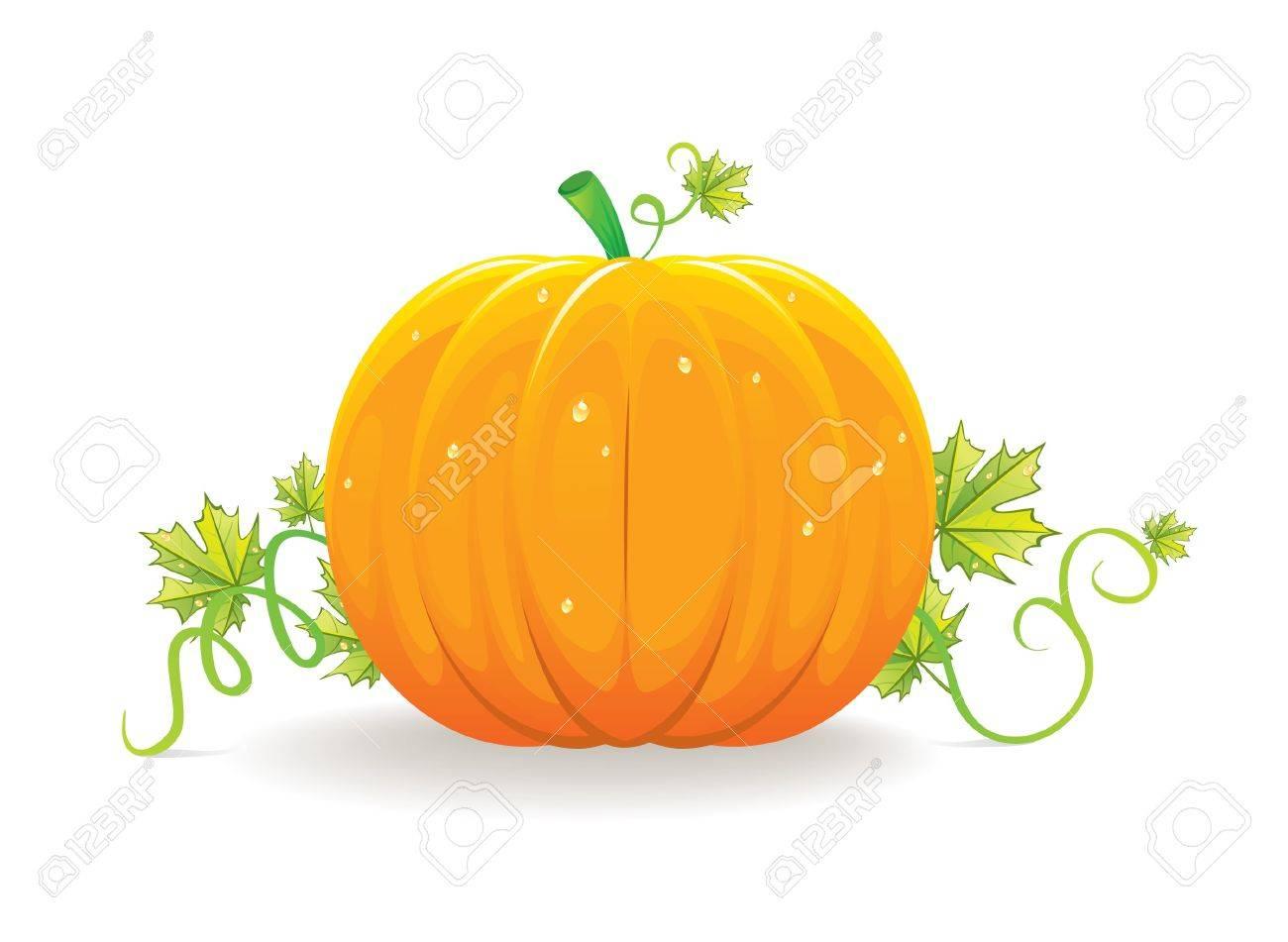Halloween pumpkin Stock Vector - 14867364