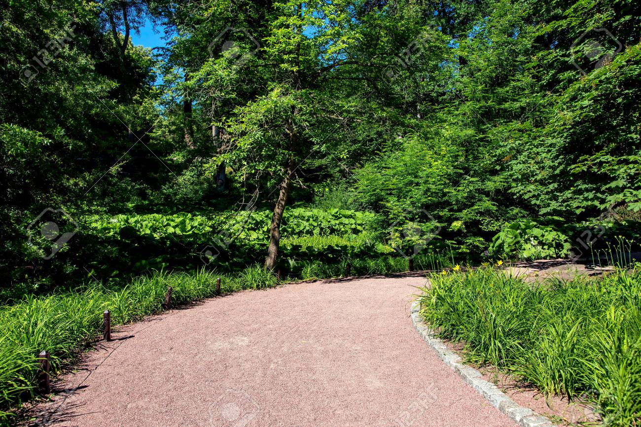 Image of: Gravel Path With A Stone Border And Flower Beds With Leafy Plants Stock Photo Picture And Royalty Free Image Image 119362407