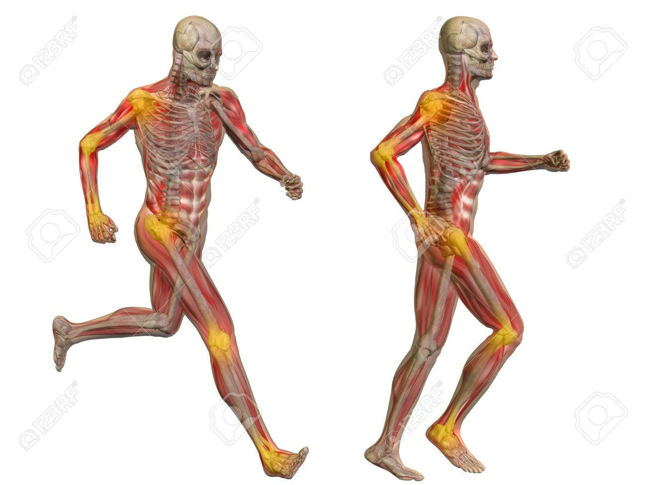 Conceptual 3D Human Man Anatomy Joint Pain Body Isolated Stock Photo ...