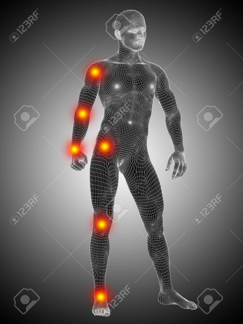 Großzügig Menschlicher Körper Anatomie Animation Ideen - Menschliche ...
