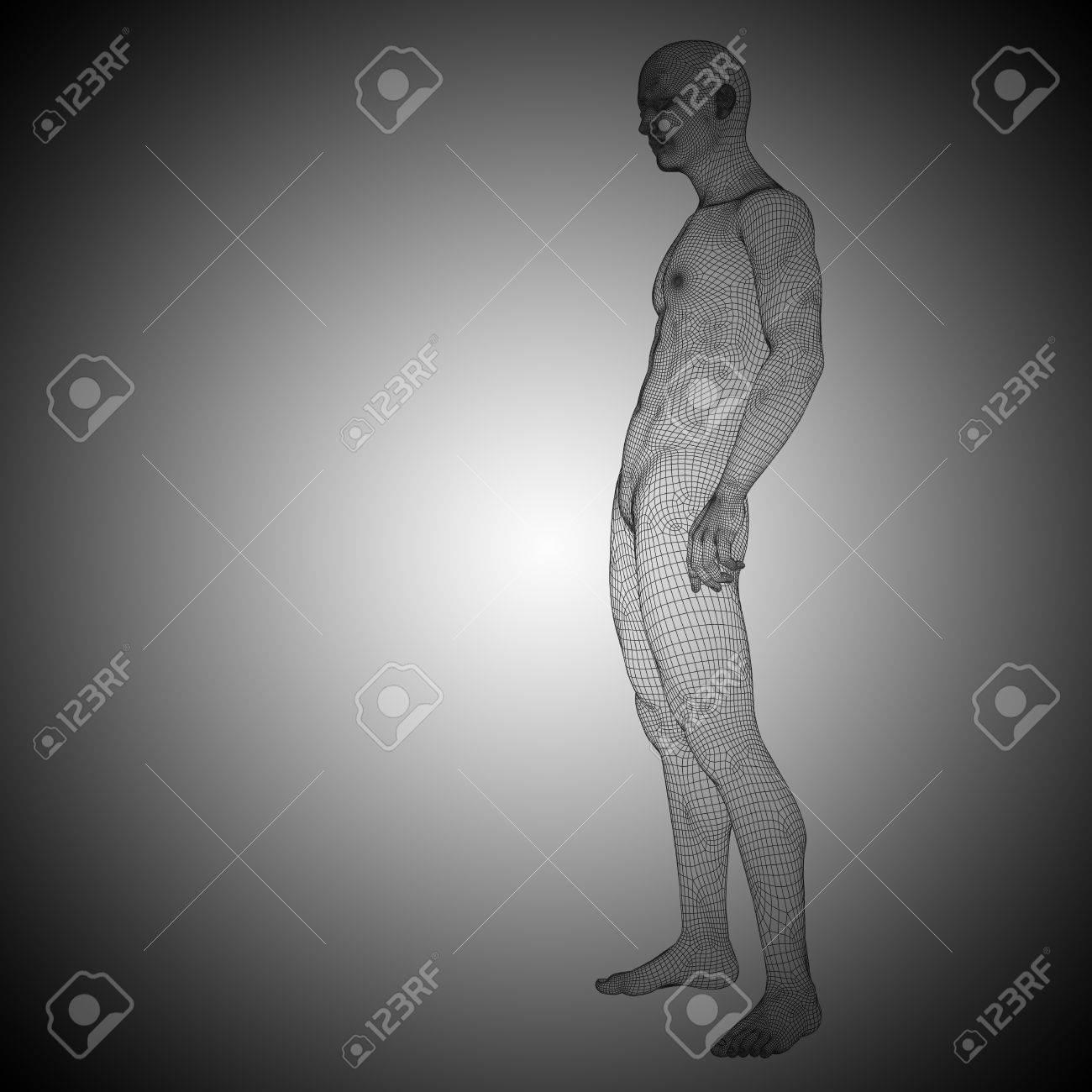 Anatomía, Dolor, Médico, Salud, Humano, Biología, 3d, Rayos X ...