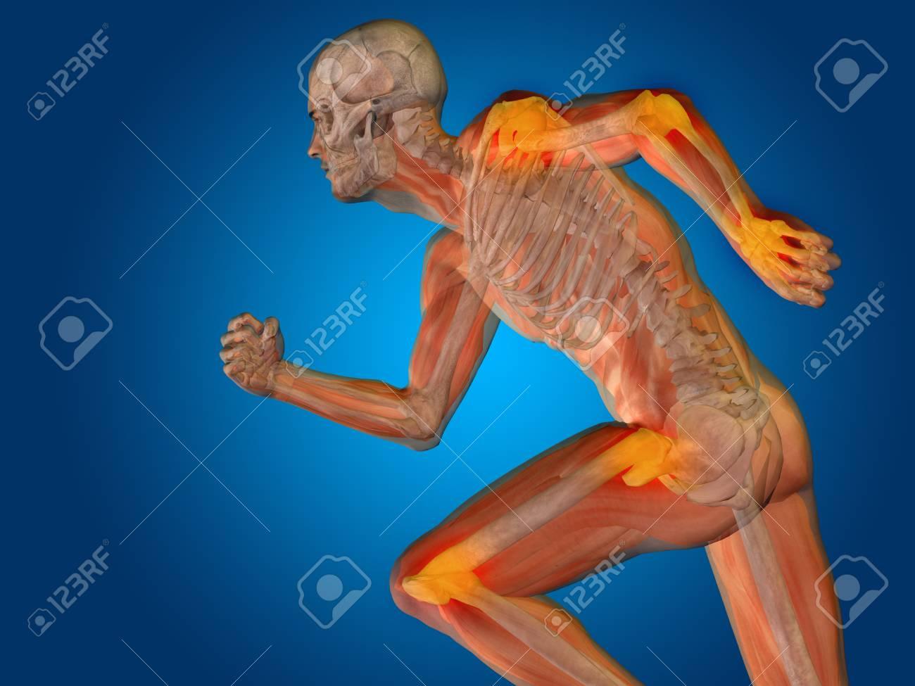 Conceptual Anatomía Del Cuerpo Humano Del Dolor Articular En El ...