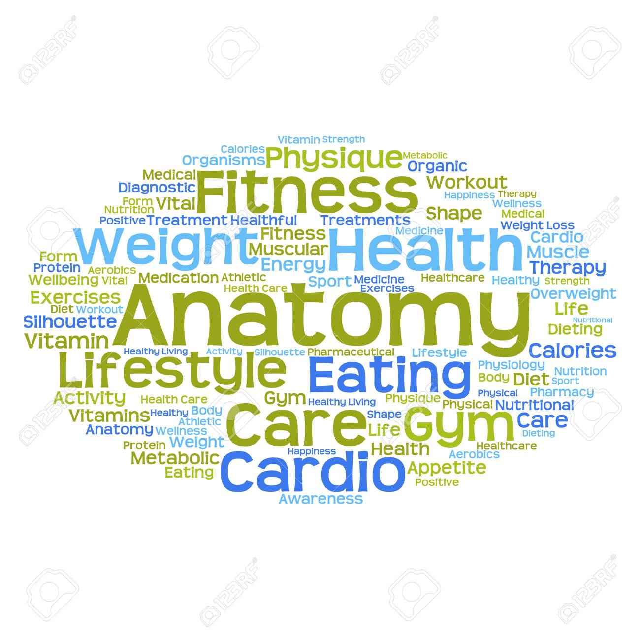 Conceptual Anatomy Word Cloud Concept Isolated On Background Stock ...