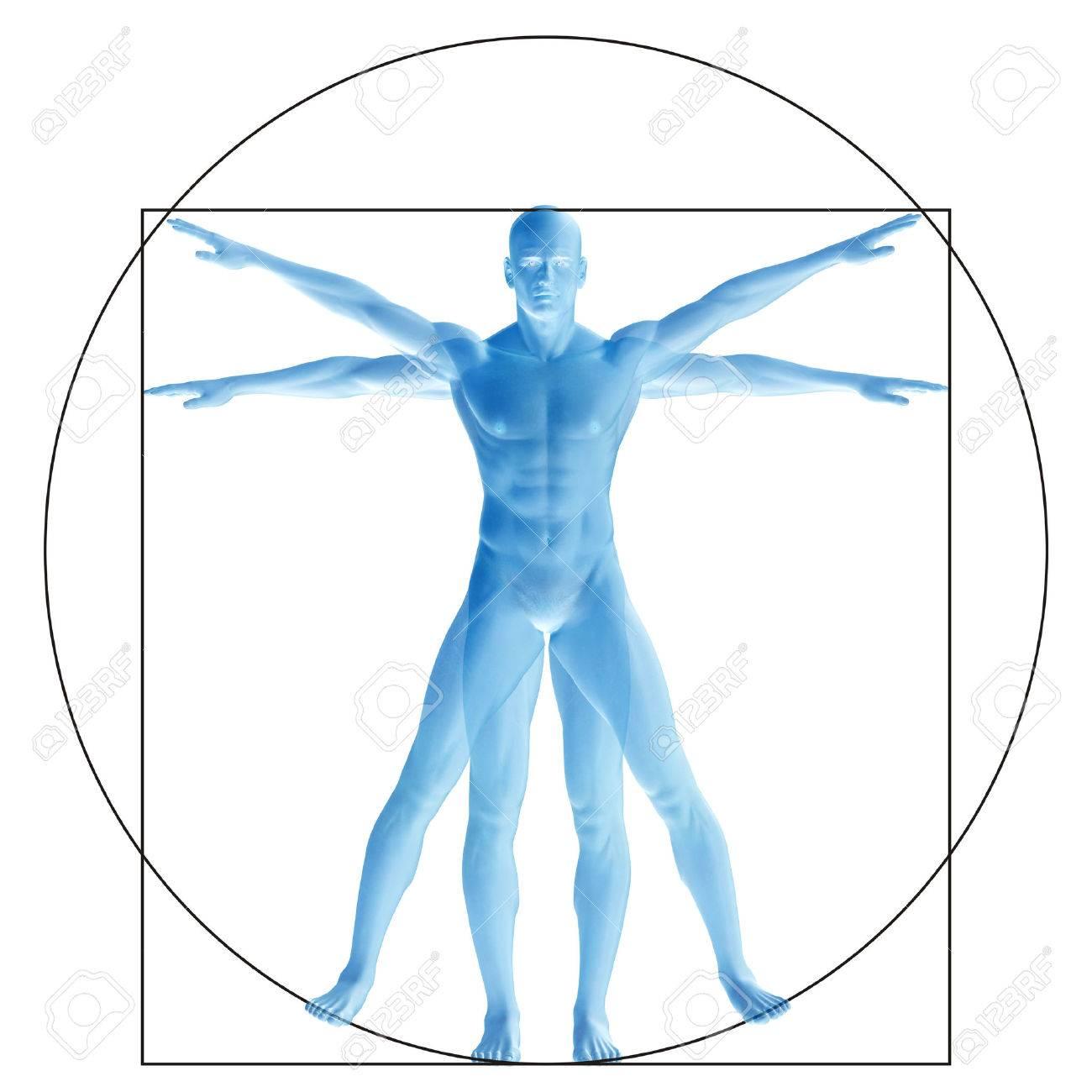 Beste Anatomie Des Menschen Frei Bilder - Anatomie Von Menschlichen ...