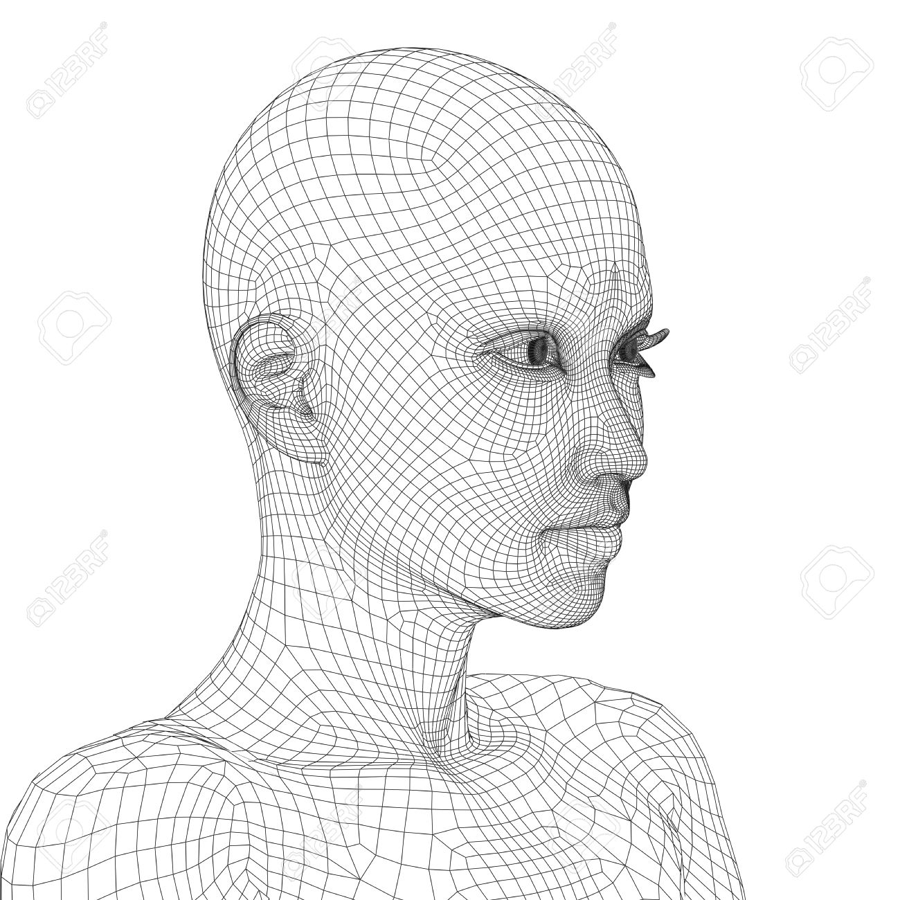 Concept Or Conceptual 3D Wireframe Young Human Female Or Woman ...