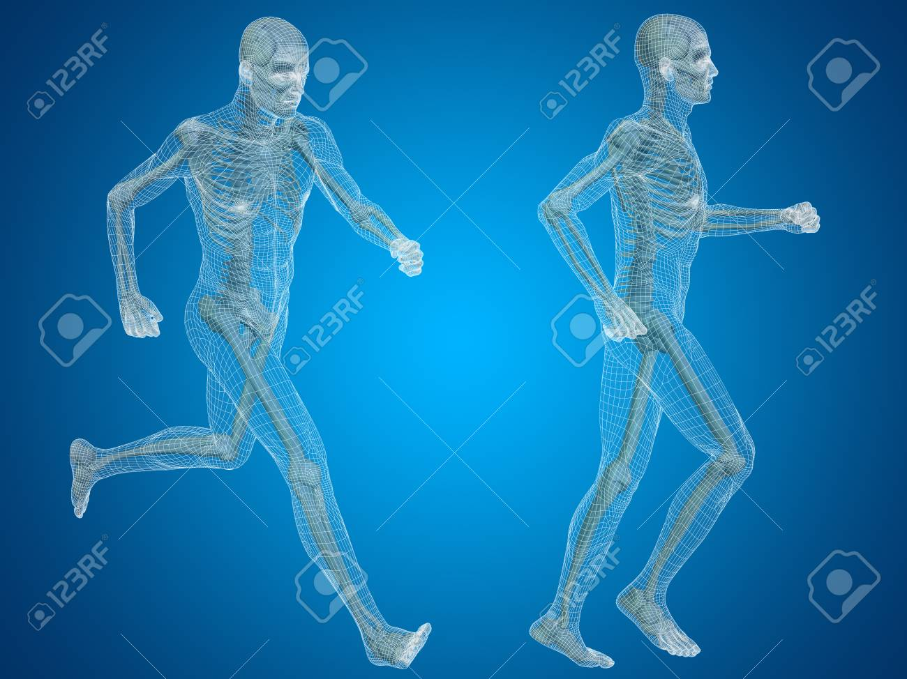Conceptual Man Or Human 3d Anatomy Or Body On Blue Background Stock