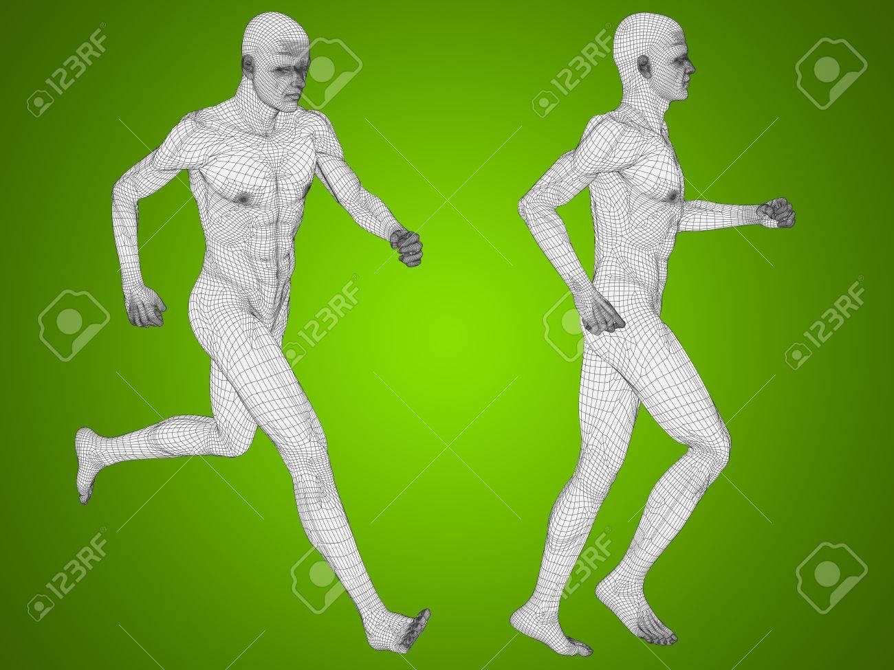 Konzeptionelle Mann Oder Menschliche 3D-Anatomie Oder Körper Auf ...