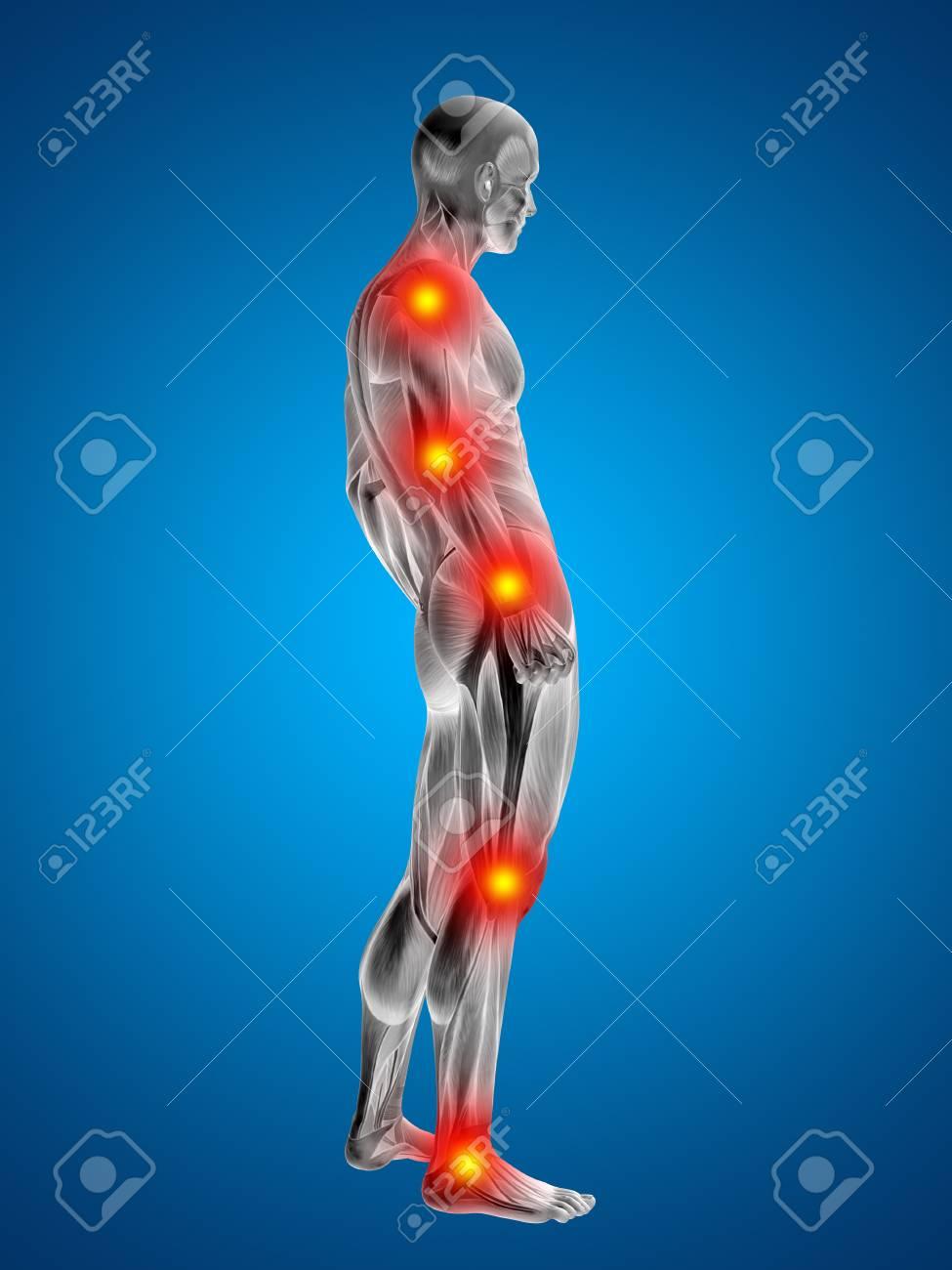 Nett Körper Menschlich Ideen - Menschliche Anatomie Bilder ...