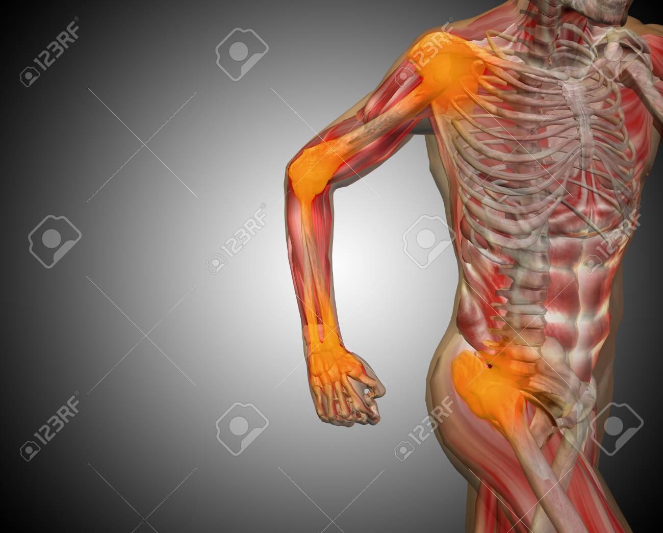 Dorable Anatomía Gris Torrente Elaboración - Imágenes de Anatomía ...