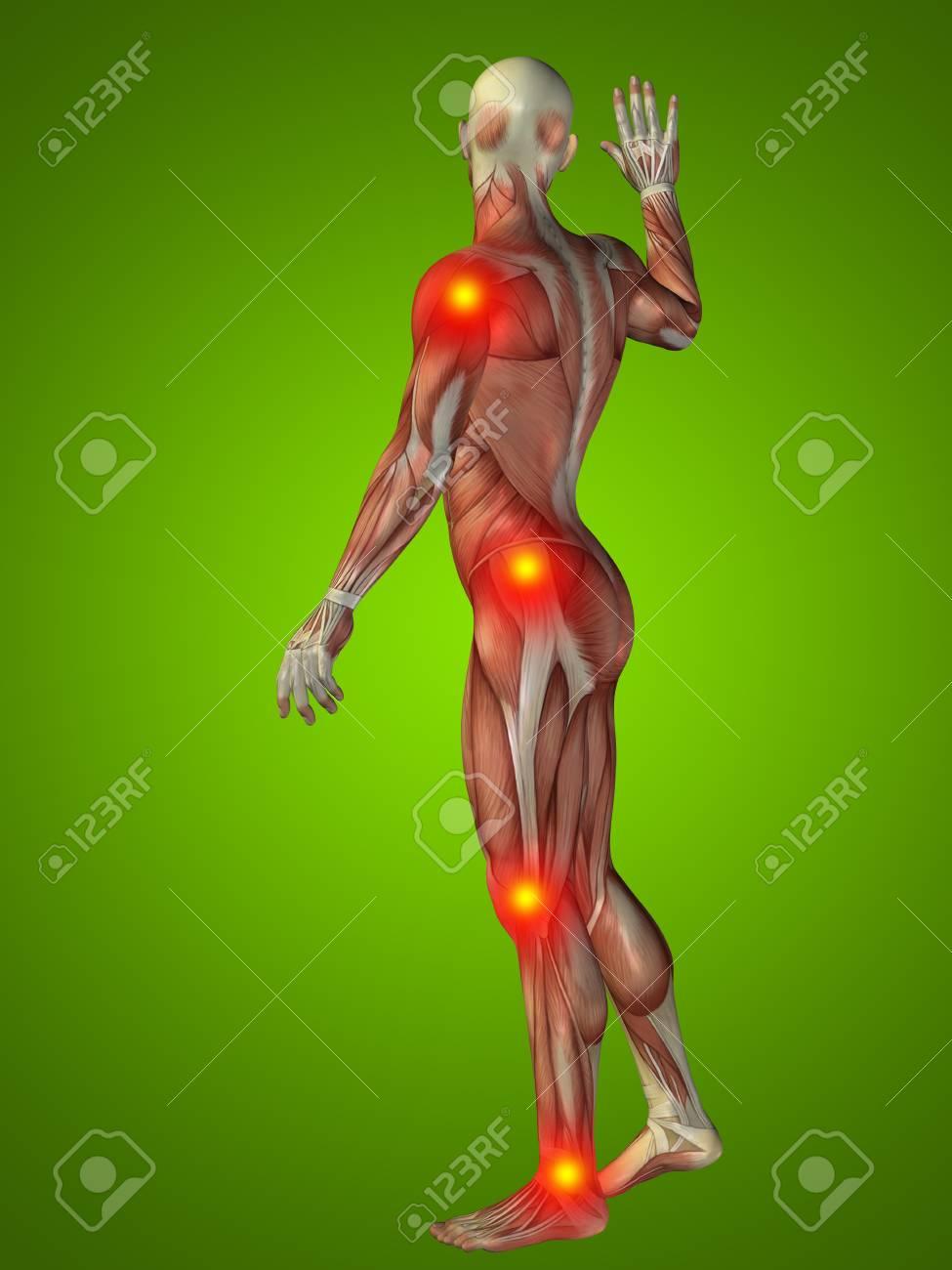 Fantastisch Anatomie Bewegungen Des Körpers Zeitgenössisch ...